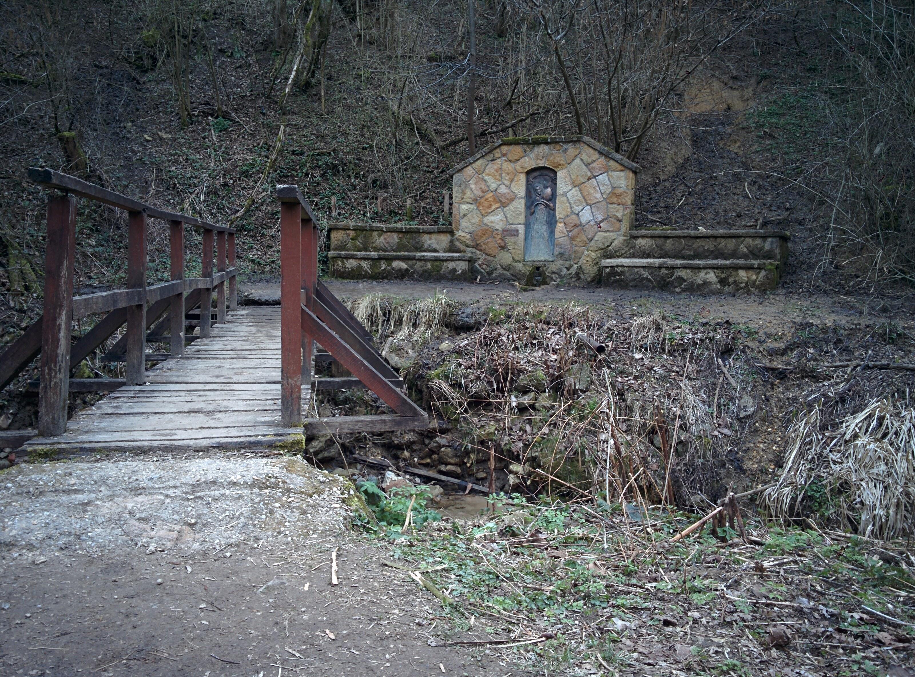 Bridge to Rózsika forrása