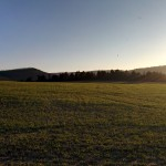Meadow at Solymár