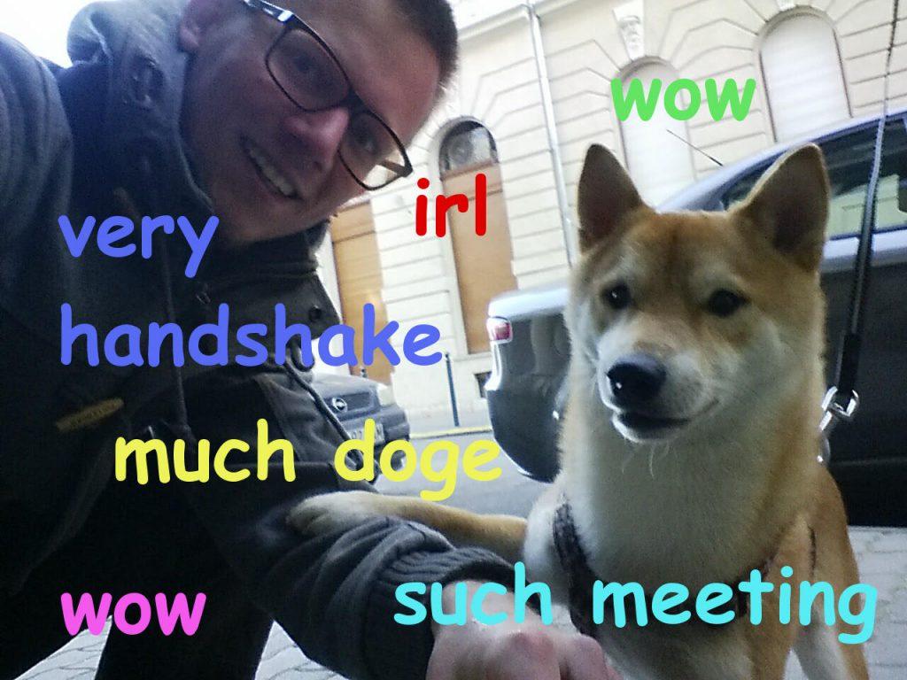 Meet Doge!
